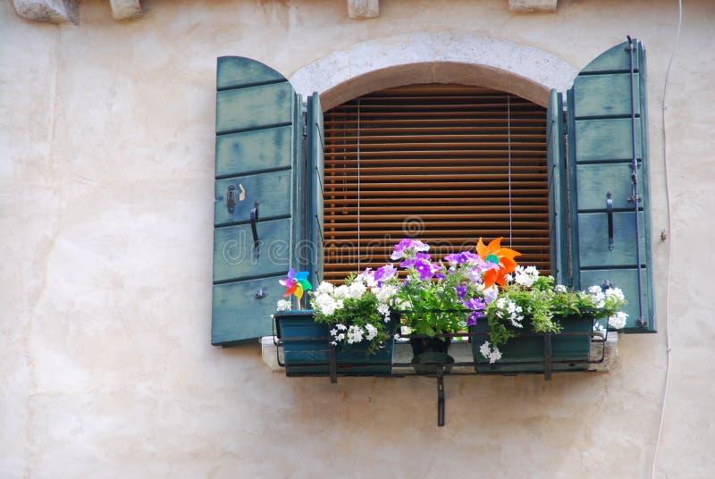 Λουλούδι της αγάπης στη Βενετία στοκ εικόνες με δικαίωμα ελεύθερης χρήσης