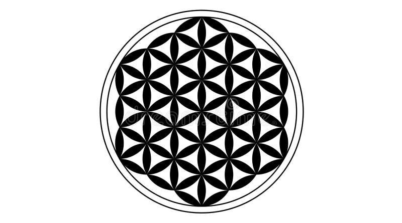 Λουλούδι του Μαύρου ζωής διανυσματική απεικόνιση