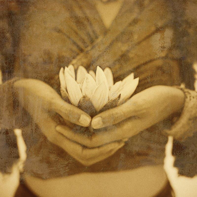 Λουλούδι Lotus Διαφωτισμού γιόγκας στοκ εικόνες με δικαίωμα ελεύθερης χρήσης