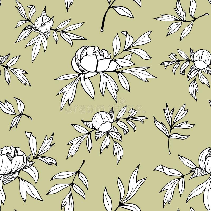 Λουλούδι Peony, οφθαλμοί, μονοχρωματικό άνευ ραφής σχέδιο φύλλων Συρμένη χέρι floral απεικόνιση περιλήψεων r διανυσματική απεικόνιση