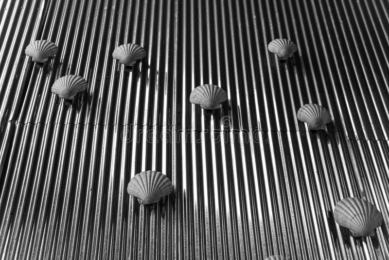 Λουρίδα θαλασσινών κοχυλιών στοκ εικόνα