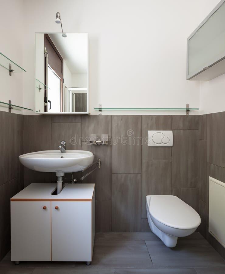 Λουτρό μπροστινής άποψης με το νεροχύτη και την τουαλέτα στοκ εικόνες