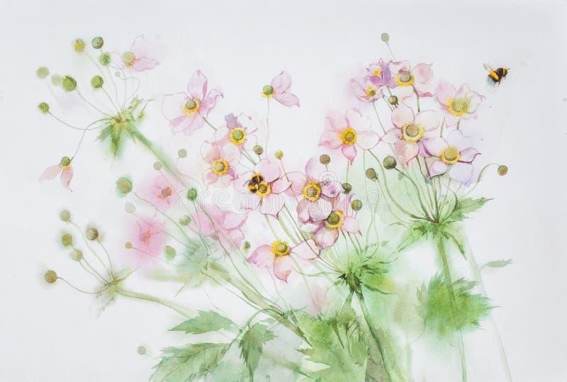 Λουλουδιών και bumblebees Anemone watercolor απεικόνιση αποθεμάτων