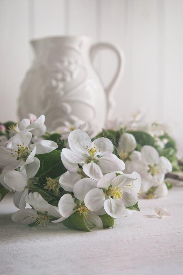 Λουλούδια ανθών της Apple με την κανάτα στο υπόβαθρο στοκ εικόνες με δικαίωμα ελεύθερης χρήσης