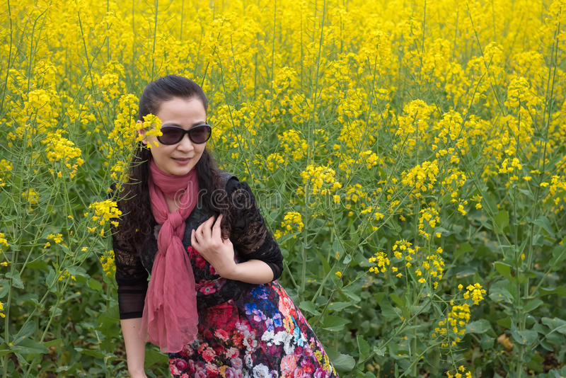 Λουλούδια βιασμών γυναικών και ελαιοσπόρων στοκ φωτογραφίες