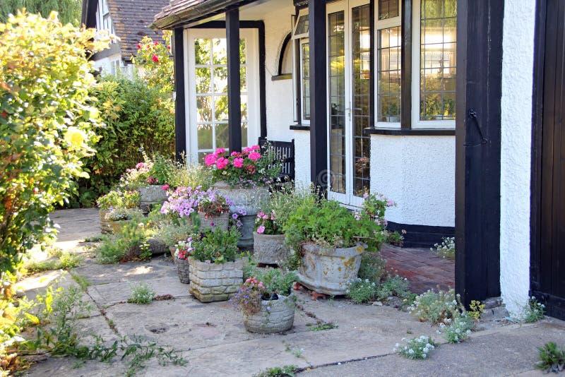Λουλούδια κήπων εξοχικών σπιτιών στοκ εικόνες με δικαίωμα ελεύθερης χρήσης