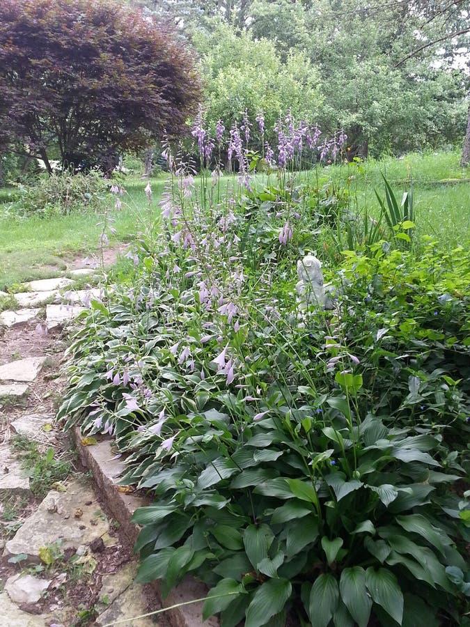 Λουλούδια και διάβαση πεζών στοκ εικόνα