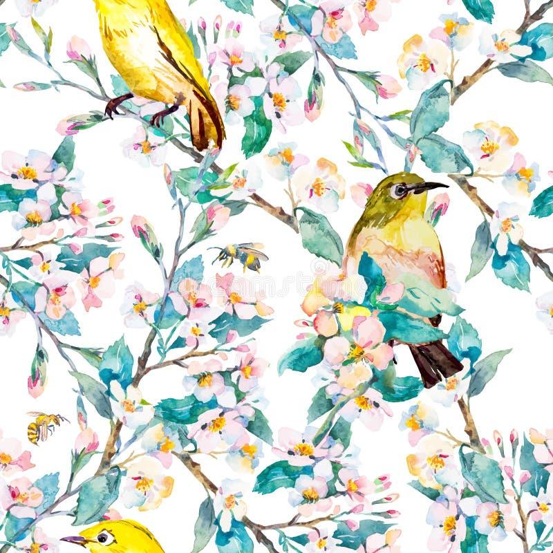Λουλούδια και πουλιά άνοιξη πρότυπο watercolor διάνυσμα όπως η ανασκόπηση είναι ο κλάδος μπορεί άνθισμα χρησιμοποιούμενο διανυσματική απεικόνιση