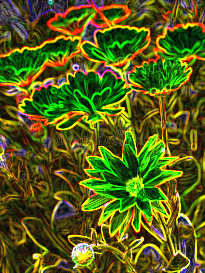 Λουλούδια σε ένα λιβάδι απεικόνιση αποθεμάτων