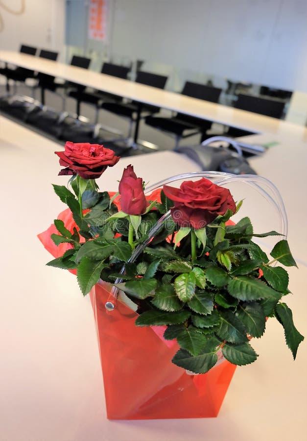 Λουλούδια στην αίθουσα συνεδριάσεων στοκ εικόνες