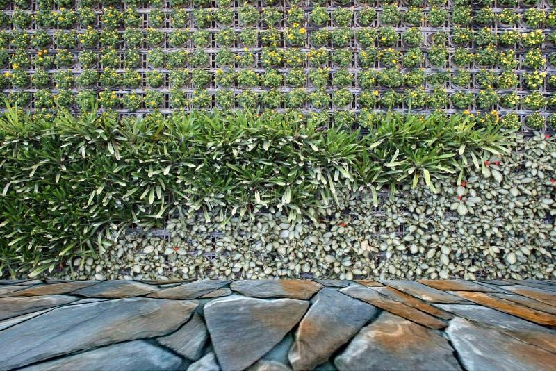 Λουλούδια στον κάθετο κήπο στοκ φωτογραφίες με δικαίωμα ελεύθερης χρήσης