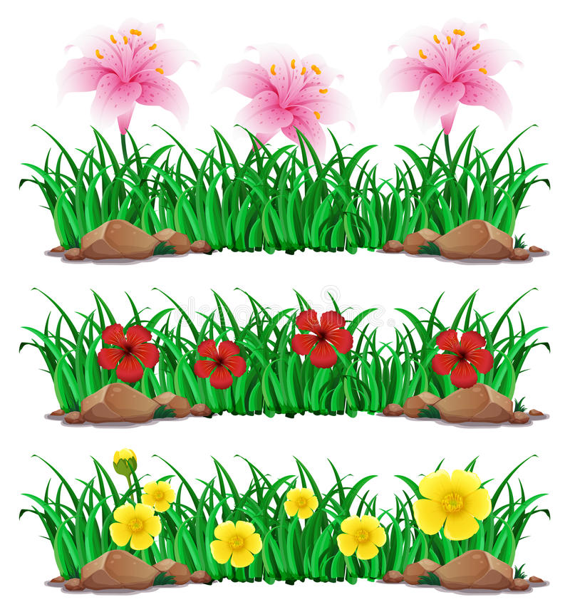 Λουλούδια στον πράσινο θάμνο διανυσματική απεικόνιση
