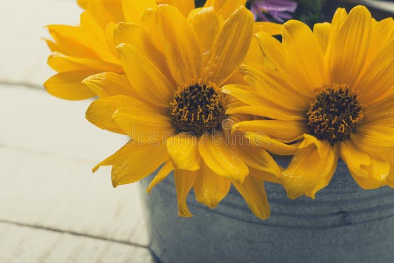 Λουλούδια φθινοπώρου στον πίνακα στοκ φωτογραφία