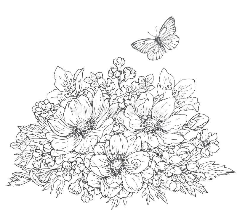 Λουλούδια Anemone και σκίτσο πεταλούδων διανυσματική απεικόνιση