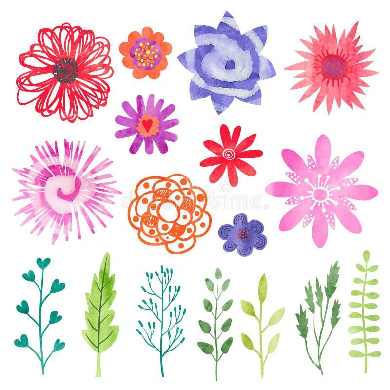 Λουλούδια Watercolor καθορισμένα Ζωηρόχρωμοι λουλούδια, φύλλα και κλάδοι ελεύθερη απεικόνιση δικαιώματος
