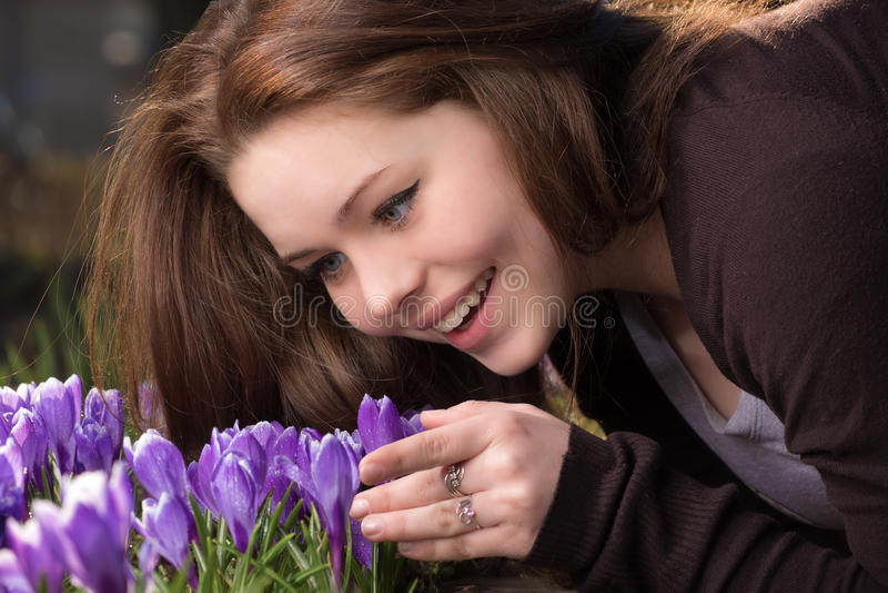 Λουλούδι άνοιξη στοκ φωτογραφία με δικαίωμα ελεύθερης χρήσης
