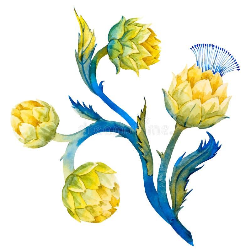 Λουλούδι αγκιναρών Watercolor απεικόνιση αποθεμάτων