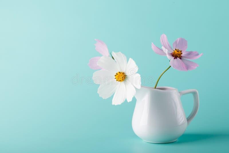 Λουλούδι κόσμου στην κανάτα γάλακτος στο υπόβαθρο χρώματος aqua στοκ φωτογραφία με δικαίωμα ελεύθερης χρήσης