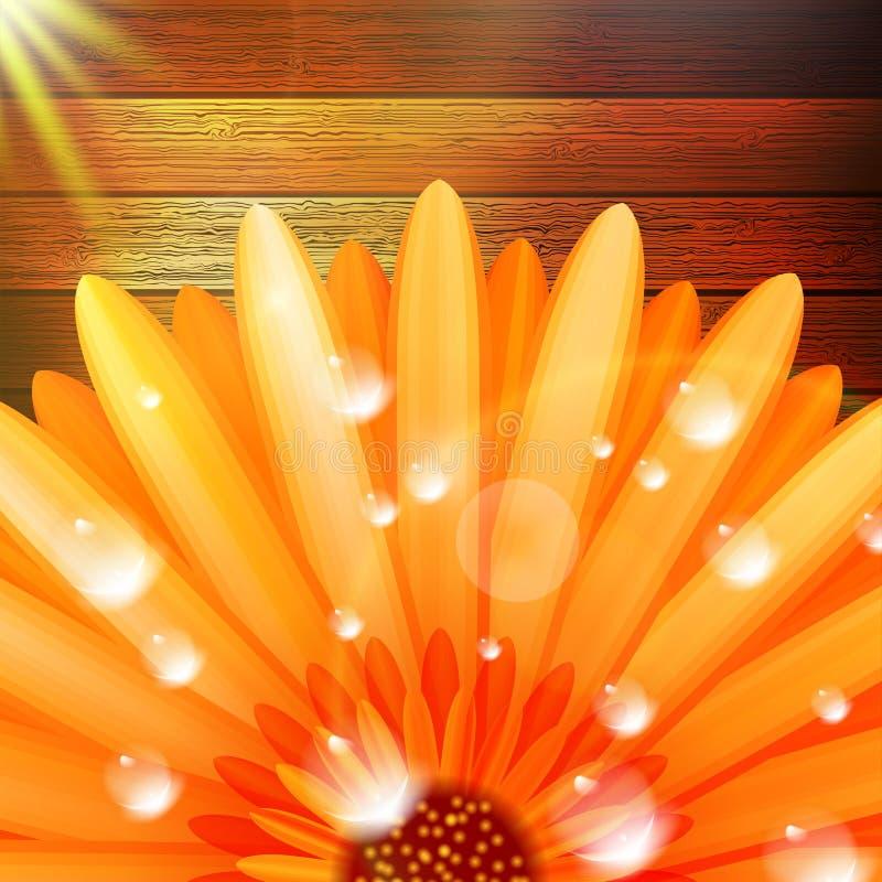 Λουλούδι με τη δροσιά στο ξύλο συν EPS10 διανυσματική απεικόνιση