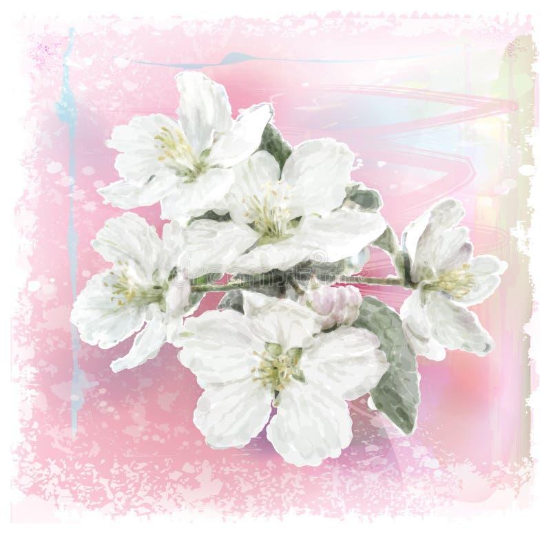 Λουλούδι της Apple ελεύθερη απεικόνιση δικαιώματος