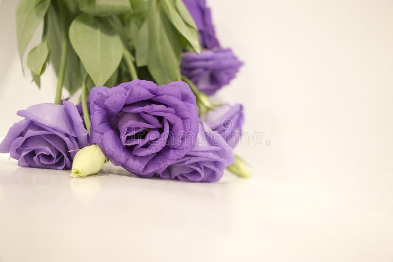 Λουλούδι Lysianthus στο ξύλινο υπόβαθρο στοκ εικόνα