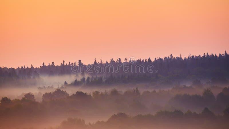 λοφώδης ελαφριά misty ακτίνα πρωινού περιοχής στοκ εικόνες