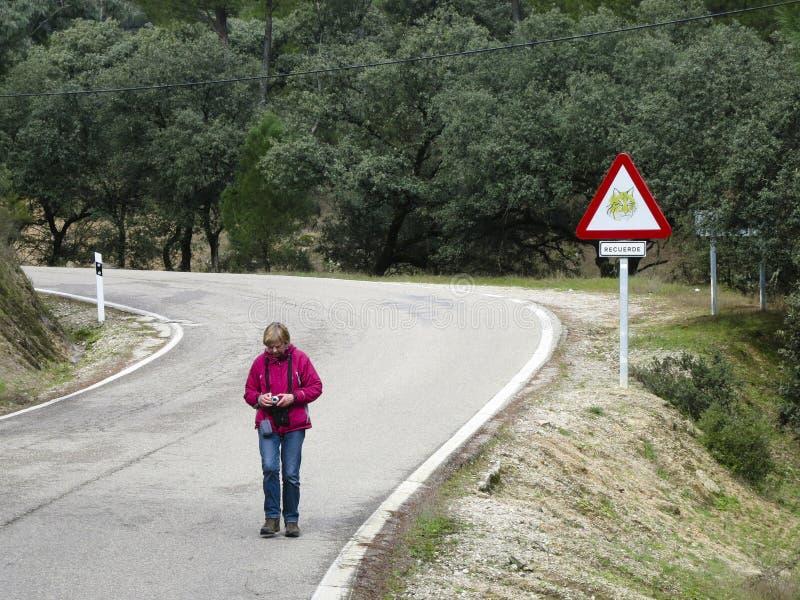 Λυγξ Spaanse Waarschuwingsbord, ιβηρικά λυγξ προειδοποιητικών σημαδιών στοκ φωτογραφία με δικαίωμα ελεύθερης χρήσης