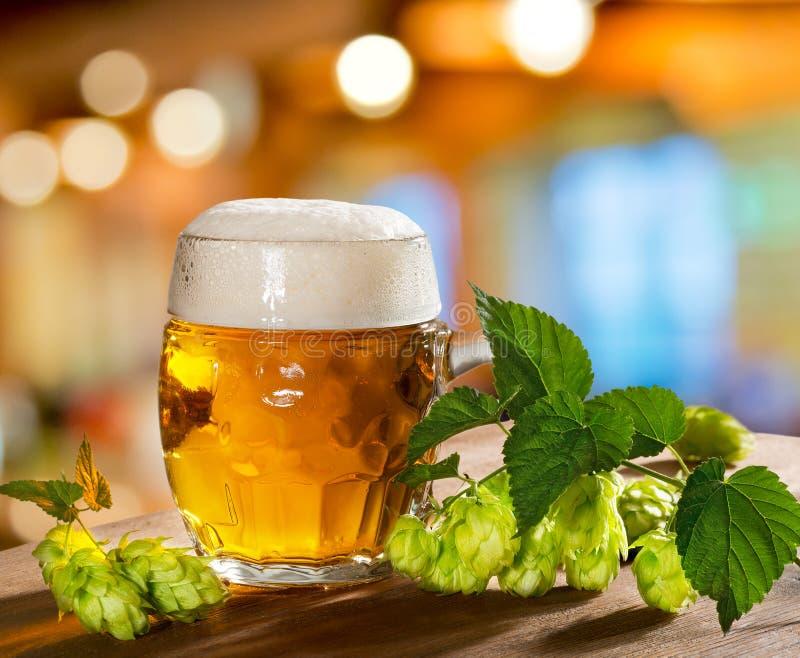 Λυκίσκοι και γυαλί μπύρας στοκ εικόνες