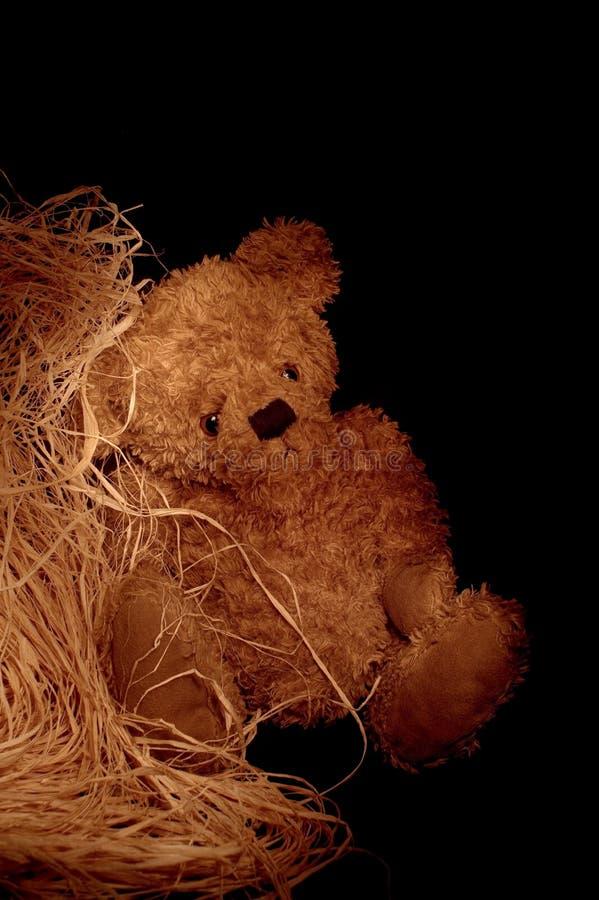 λυπημένος ακόμα teddybear ζωής στοκ φωτογραφίες με δικαίωμα ελεύθερης χρήσης