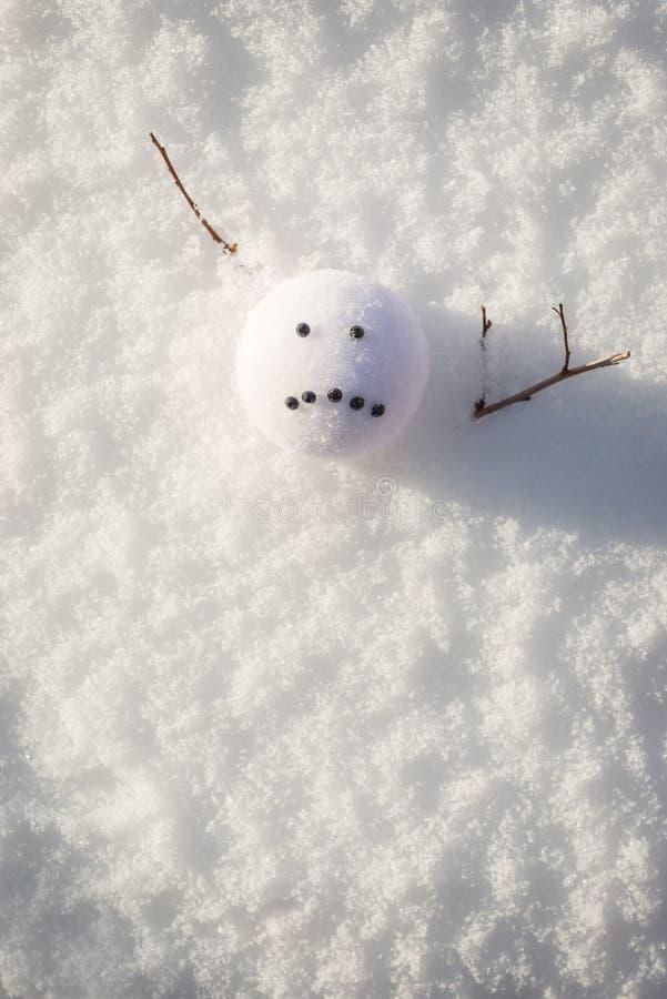 Λυπημένος χιονάνθρωπος προσώπου που λειώνει στη χειμερινή ηλιοφάνεια στοκ φωτογραφίες με δικαίωμα ελεύθερης χρήσης