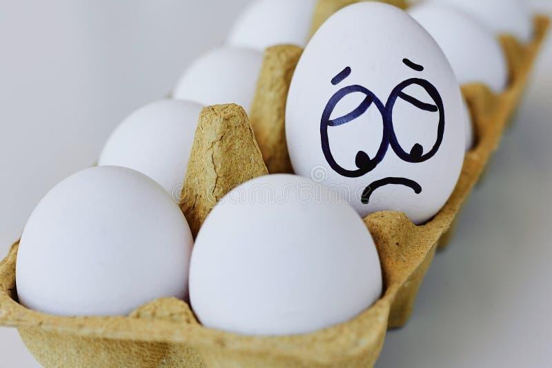 Λυπημένο αυγό σε ένα κιβώτιο χαρτοκιβωτίων στοκ εικόνες