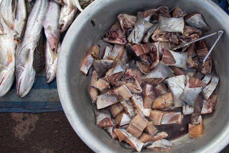 Λωρίδα ακατέργαστων ψαριών στην ασιατική τοπική αγορά στοκ εικόνες