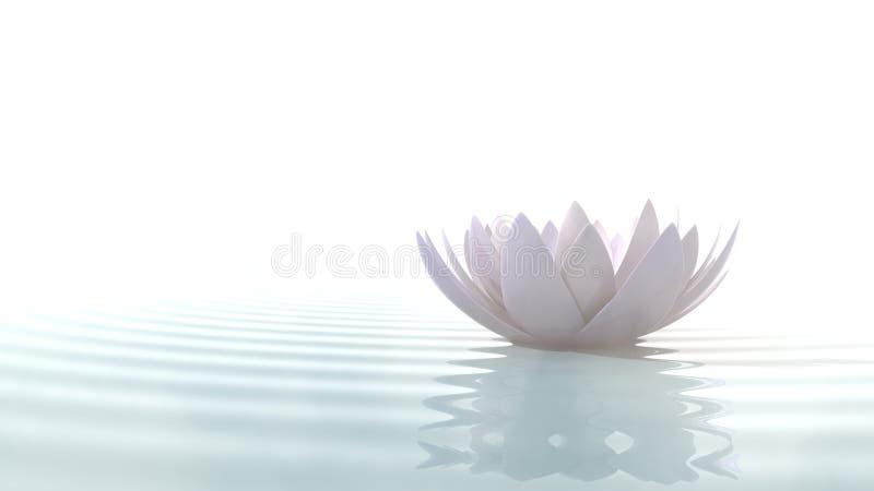 Λωτός της Zen στο νερό απεικόνιση αποθεμάτων