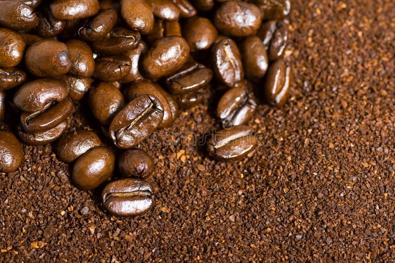 λόγοι καφέ φασολιών ανασ&kap στοκ φωτογραφία με δικαίωμα ελεύθερης χρήσης