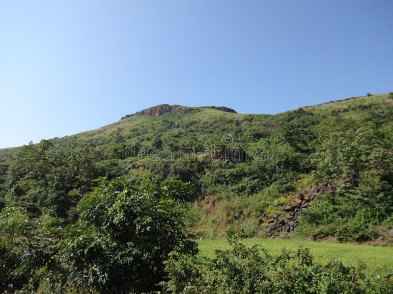 Λόφοι και σειρά βουνών, άποψη τοπίων πρασινάδων δέντρων στοκ φωτογραφίες