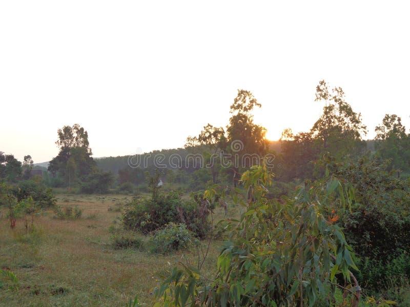 Λόφοι και σειρά βουνών, άποψη τοπίων πρασινάδων δέντρων στοκ εικόνες με δικαίωμα ελεύθερης χρήσης