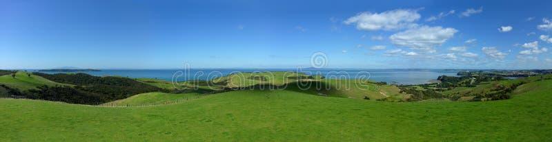 Λόφοι κυλισμάτων στη Νέα Ζηλανδία στοκ φωτογραφία με δικαίωμα ελεύθερης χρήσης