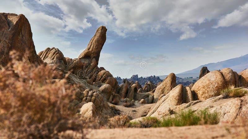 Λόφοι της Αλαμπάμα, καλύτερη θέση στο βλαστό westerns στοκ φωτογραφίες με δικαίωμα ελεύθερης χρήσης