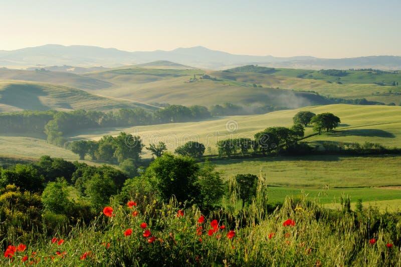 Λόφοι της Τοσκάνης στοκ φωτογραφίες με δικαίωμα ελεύθερης χρήσης