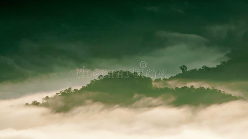 Λόφοι του τροπικού δάσους που περιβάλλονται από την υδρονέφωση σε ξημερώματα στοκ εικόνα