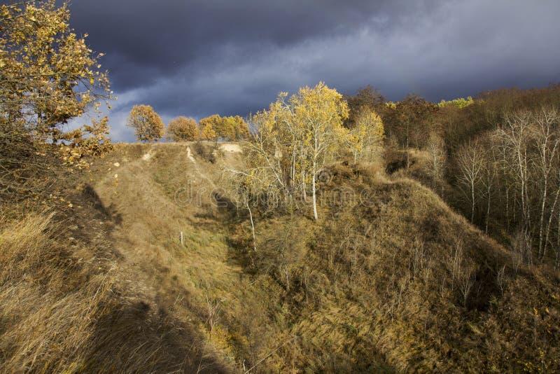 Λόφοι φθινοπώρου με τα δέντρα στοκ εικόνα