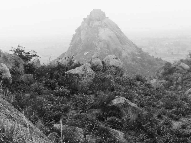 Λόφοι SHAW στοκ εικόνες