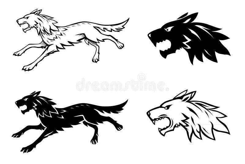 λύκος απεικόνισης ελεύθερη απεικόνιση δικαιώματος
