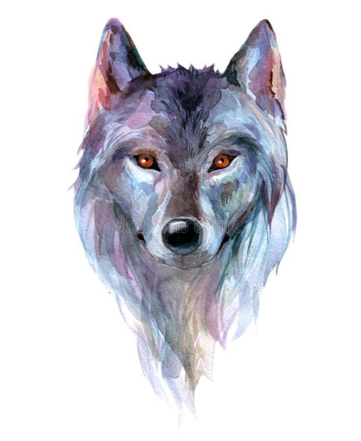 Λύκος από το watercolor διανυσματική απεικόνιση
