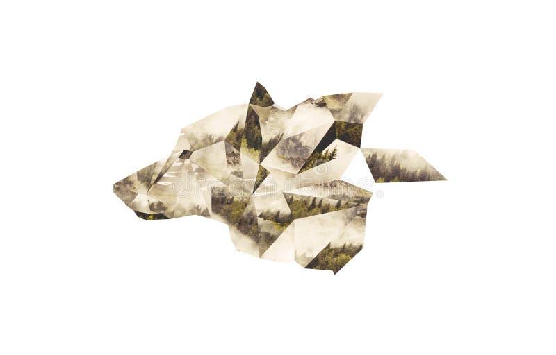 Λύκος επικεφαλής OS ένα κολάζ από τα πολύγωνα Cutted από τη φωτογραφία του δάσους της Misty στοκ εικόνα