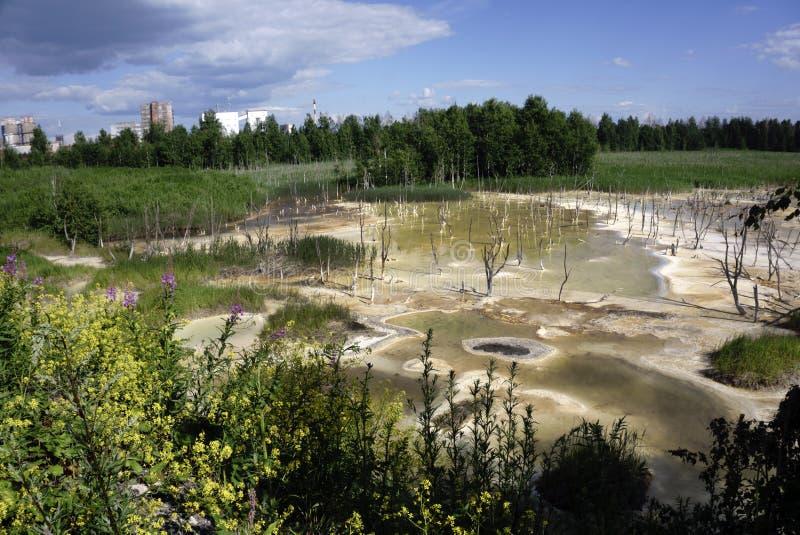 Λύματα που απαλλάσσονται στη λίμνη Η καταστροφή της φύσης Η υγεία και το καθαρό νερό στοκ εικόνες με δικαίωμα ελεύθερης χρήσης