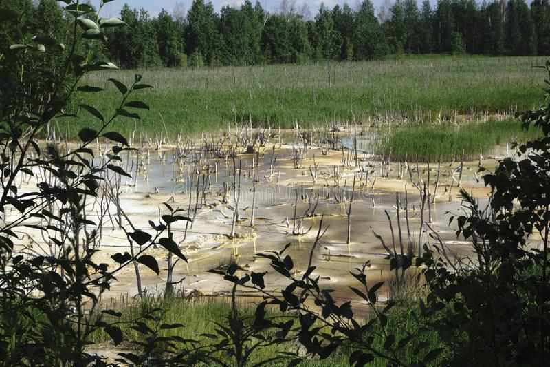 Λύματα που απαλλάσσονται στη λίμνη Η καταστροφή της φύσης Η υγεία και το καθαρό νερό στοκ εικόνες