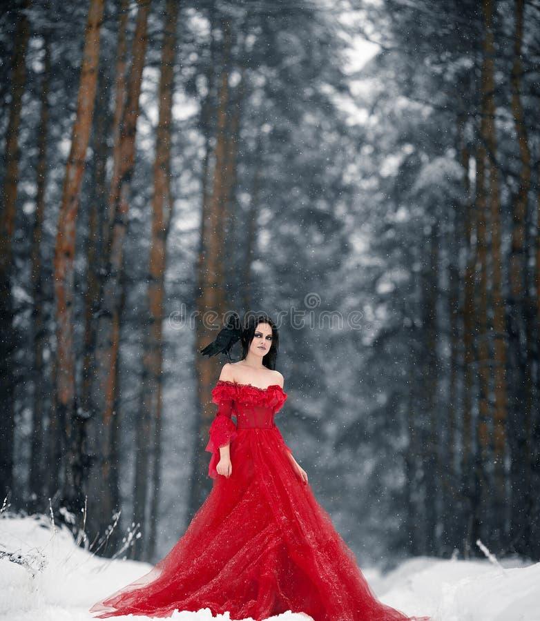 Μάγισσα γυναικών στο κόκκινο φόρεμα και με το κοράκι στον ώμο της σε χιονώδη στοκ φωτογραφία