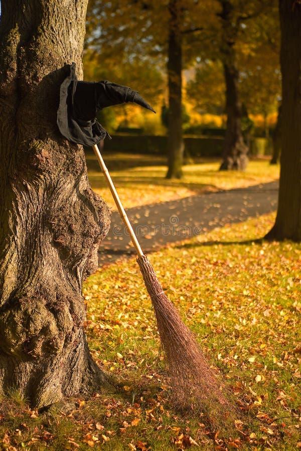 μάγισσα καπέλων πτώσης σκ&omicr στοκ φωτογραφίες με δικαίωμα ελεύθερης χρήσης