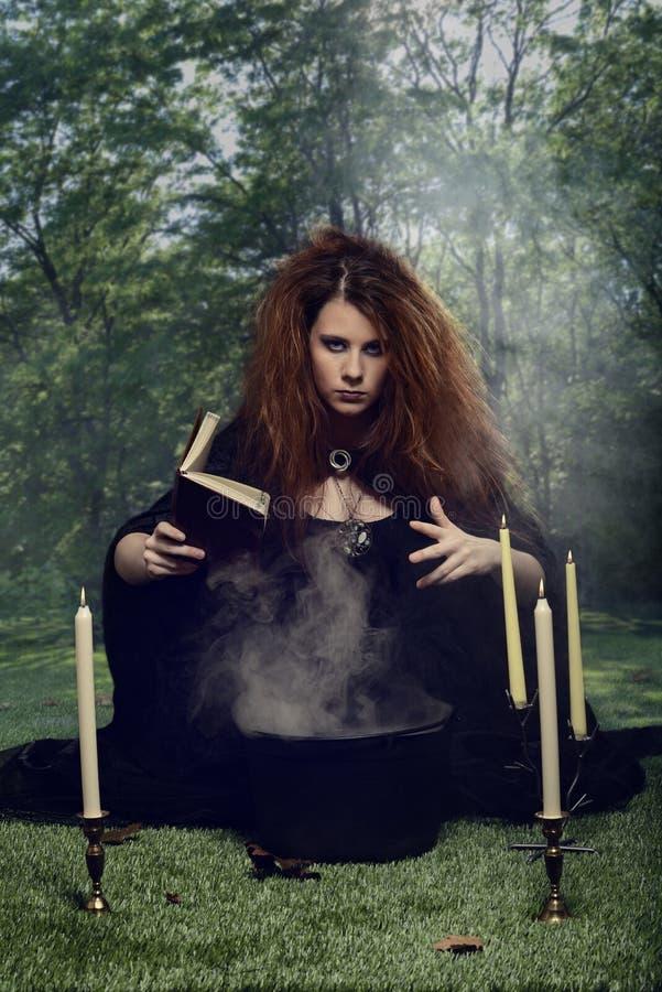 Μάγισσα με το καζάνι και βιβλίο περιόδου στο δάσος στοκ εικόνες